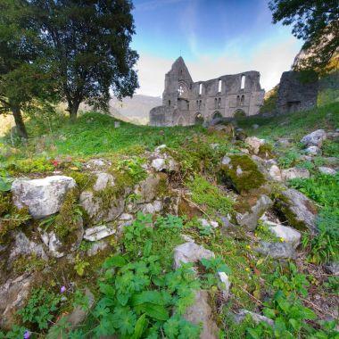 Abbaye d'Aulps - Domaine de Découverte de la Vallée d'Aulps (DDVA)