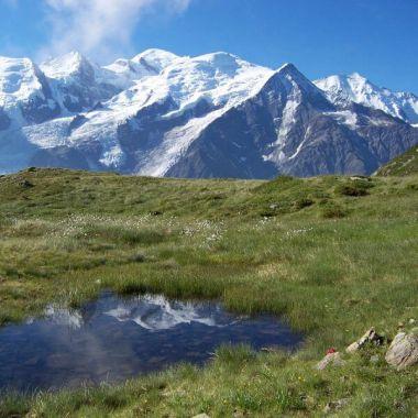 Société d'Économie Alpestre de la Haute-Savoie (SEA 74)